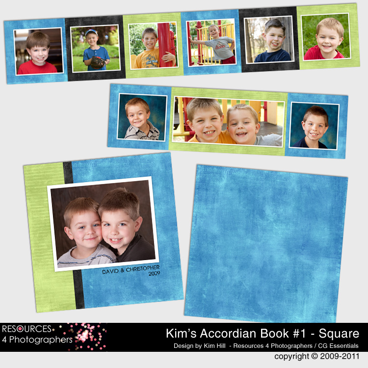 Accordian Book Template Set 1