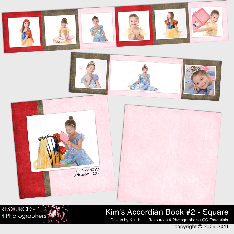 Accordian Book Template Set 2